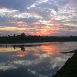 Narmada River near Jabalpur